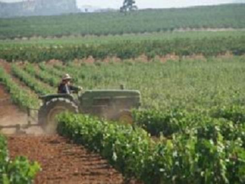contratos eventuales indefinidos agrario