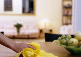 tratamiento sistema especial empleados hogar